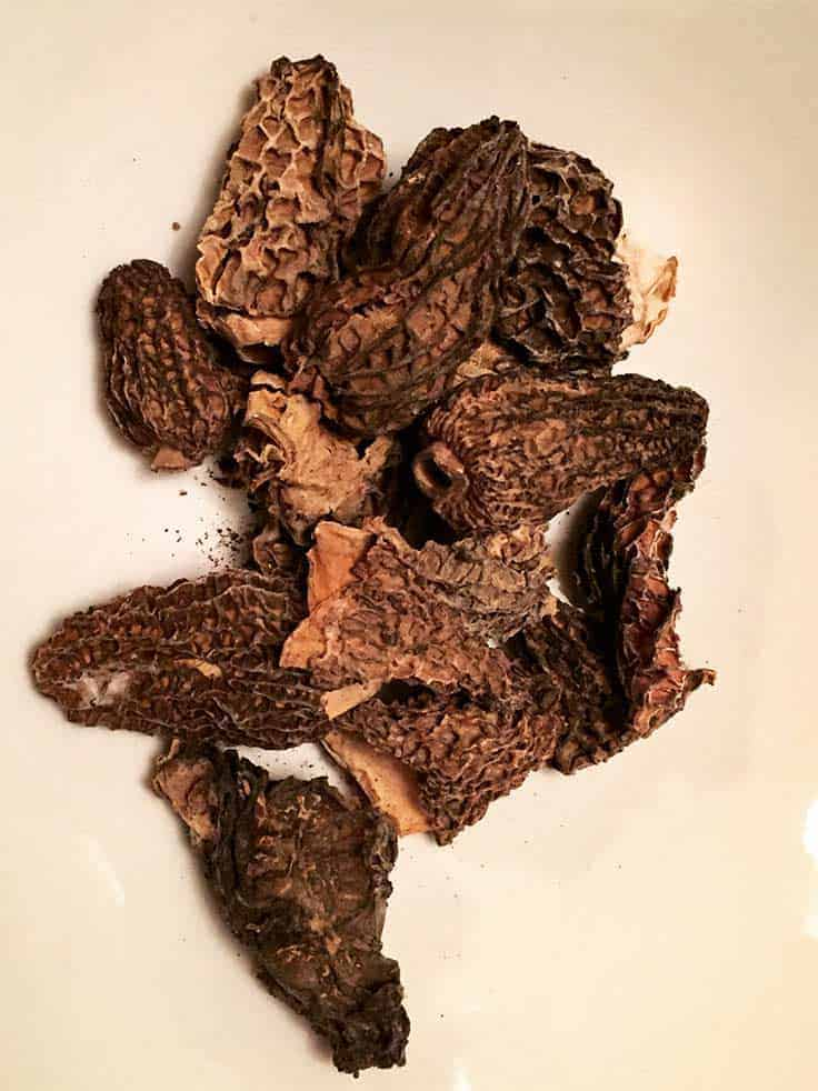 morel mushrooms can be made into a good sauce for turkey.
