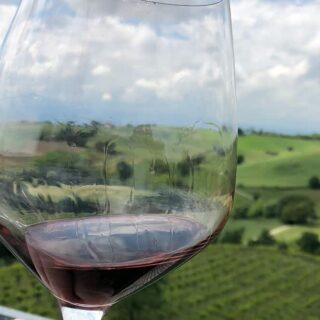 glass of red wine with vineyard in background.