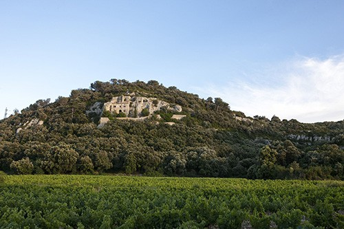 Vineyard and chateau in the Lirac Rhone wine region.