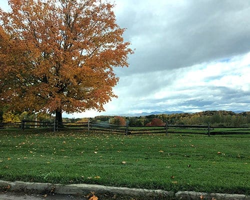 fall colors in Shelburne, Vermont