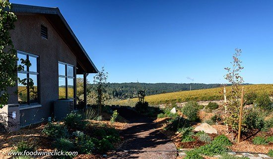 Sonoma Wine Country