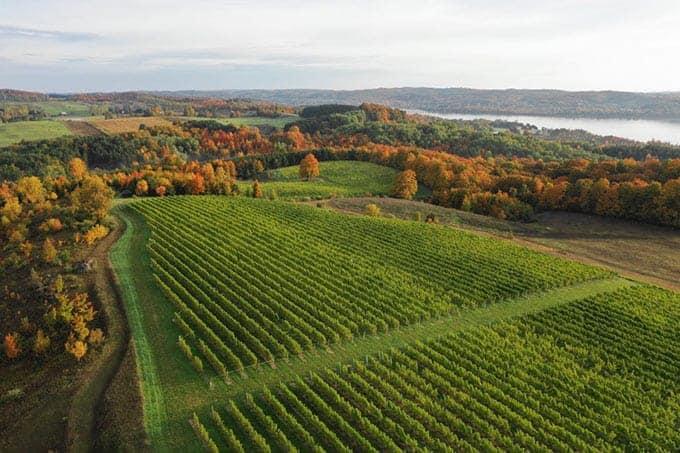 View of Amoritas Vineyard winery in Michigan.