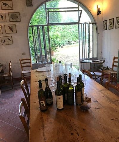 tasting room at Montenidoli winery in Tuscany