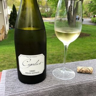 Savoring a Special White Wine from Southern France