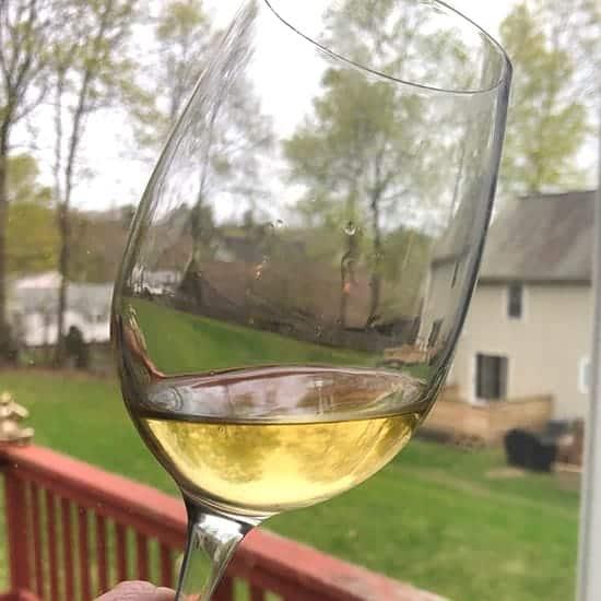 Pecorino wine in the glass.