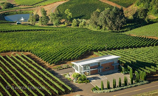 arial view of Winderlea Vineyard and Winery.