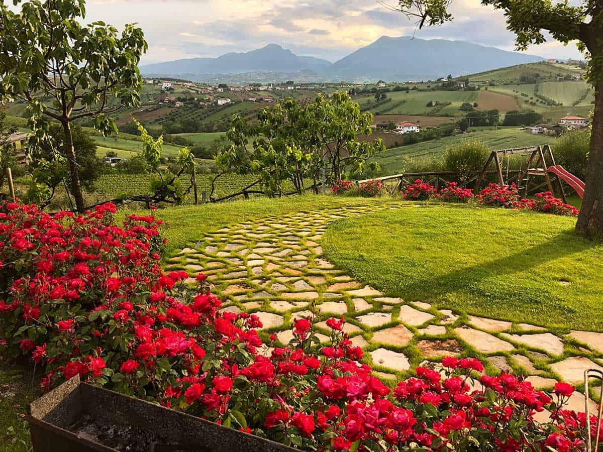 Abruzzo winery with roses in foreground and mountains in the distance.