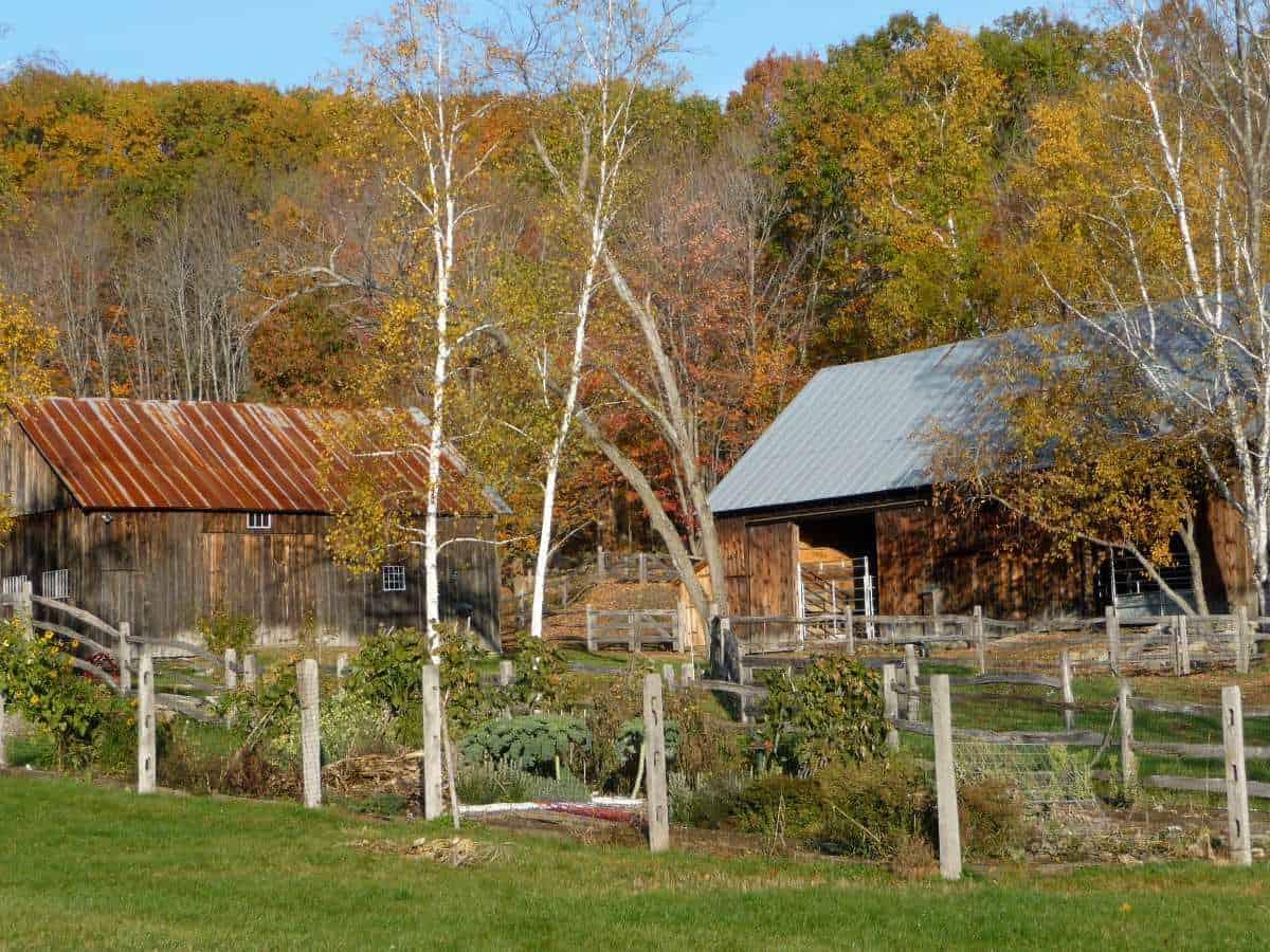 Spring-Rock Farm in Vermont