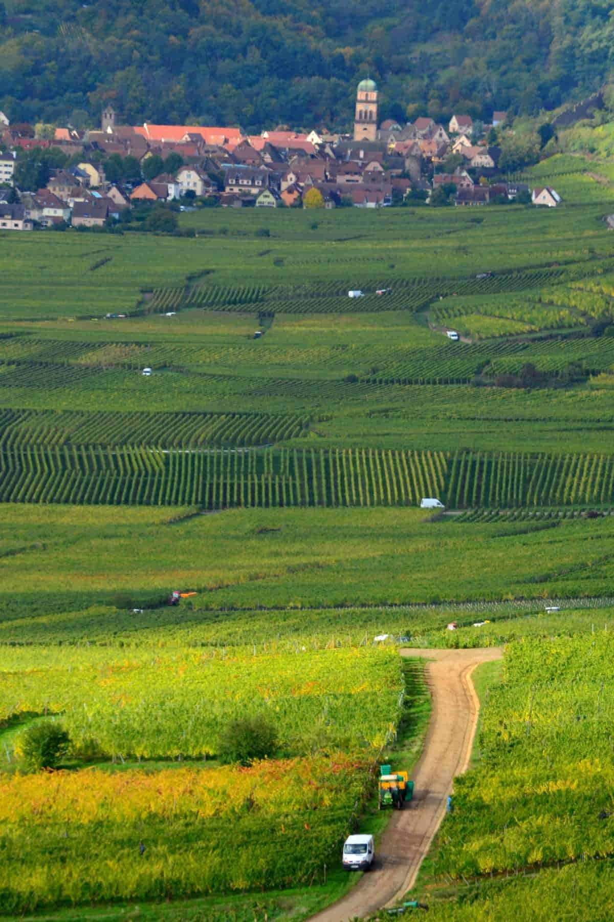 farmland and vineyards along the Alsace wine route, with a village in the background.